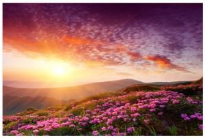 Sunrise1